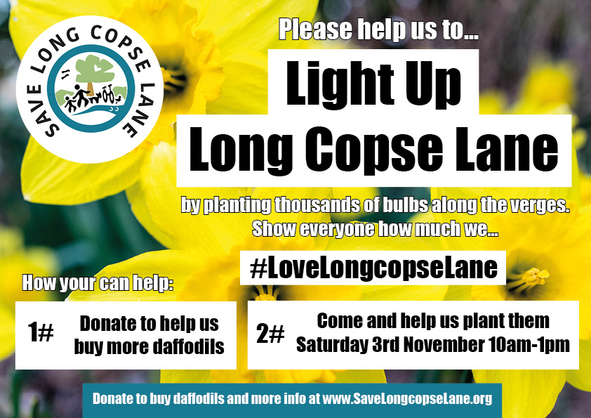 Light Up Long Copse Lane!