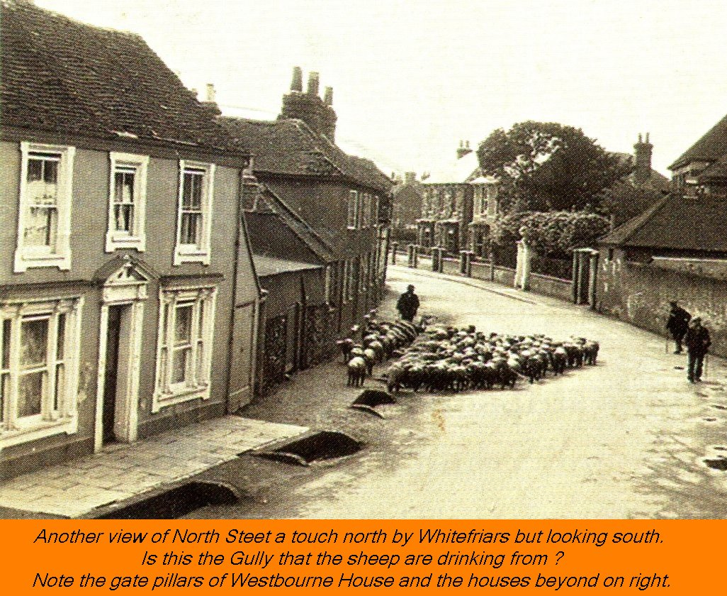 WESTBOURNE HISTORY PHOTO, NORTH STREET, SHEEP, GULLY, WHITEFRIARS