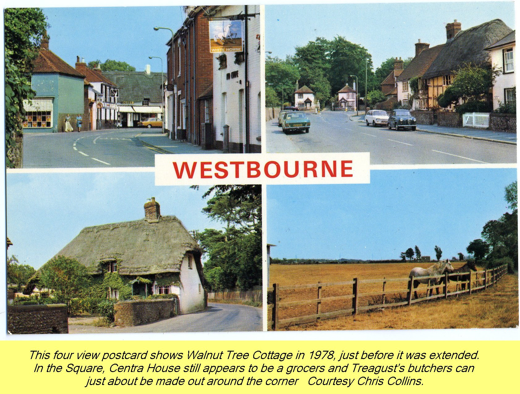 WESTBOURNE HISTORY PHOTO, POSTCARD, VIEWS, WALNUT TREE, CENTRA, TREAGUST