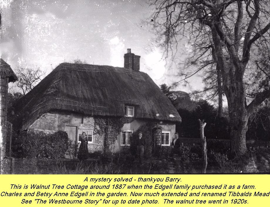 WESTBOURNE HISTORY PHOTO, EDGELL, WALNUT TREE, TIBBALDS MEAD