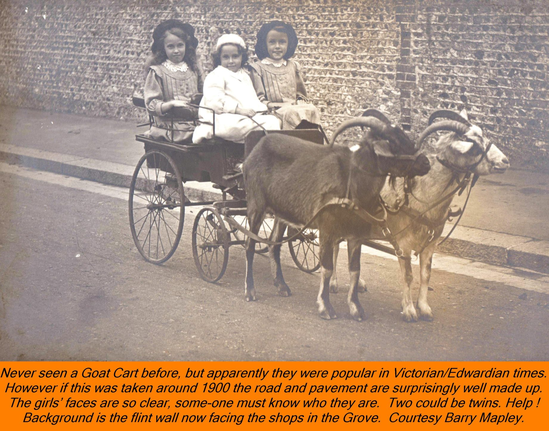 WESTBOURNE HISTORY PHOTO, GROVE, GOAT CART, GIRLS