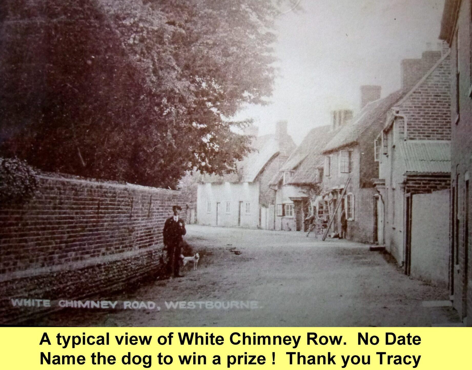 WESTBOURNE HISTORY PHOTO, WHITE CHIMNEY ROW, THATCH, WALNUT TREE, TIBBALDS