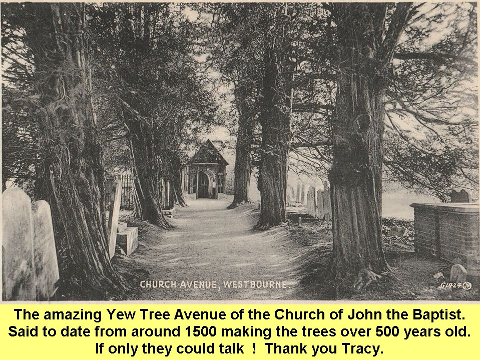 WESTBOURNE HISTORY PHOTO, CHURCH, St. JOHN, YEW, PORCH, FITZALAN